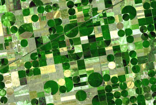 Crops_Kansas_small